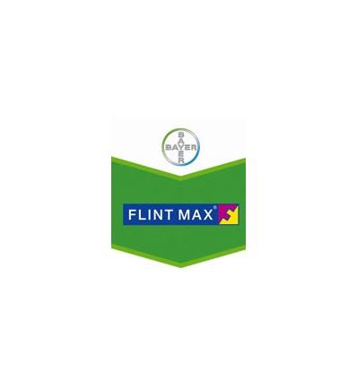 Flint Max