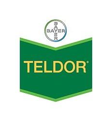 Teldor