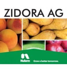 Zidora AG