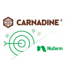 Carnadine